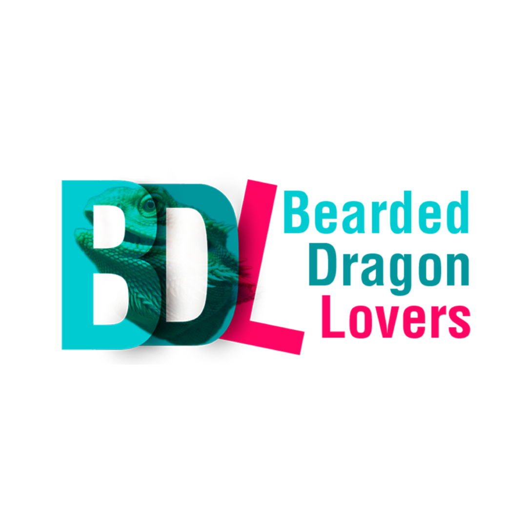 Bearded Dragon Lovers